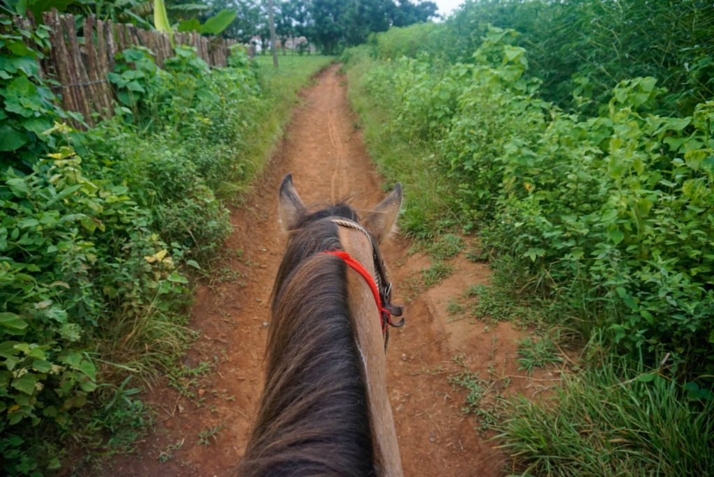 horse ride in Vinales