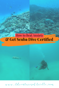 Pinterest- Scuba Dive Certified